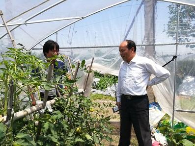 常熟研究院赴杨塘农业合作社开展技术服务